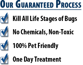 Bed Bug Heat Treatment Benefits